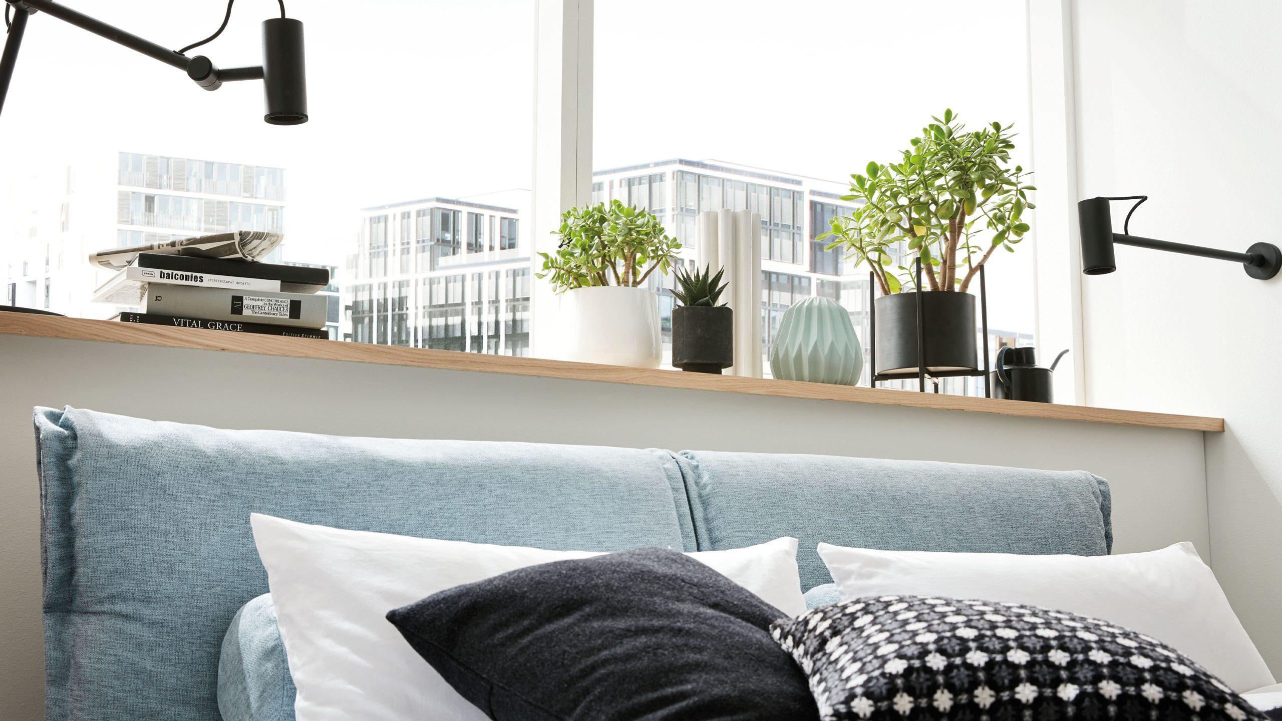 Pflanzen im Schlafzimmer  Diese Pflanzen verbessern die Luftqualität